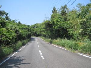 川尻岬までの道
