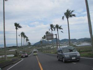 開聞岳近くの南国道路