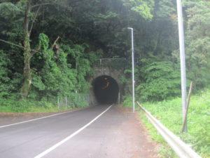 トトロ道2